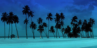Blue Palms Art Print by Sean Davey