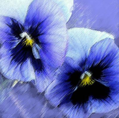 Painting - Blue Pansies  by Jane Schnetlage