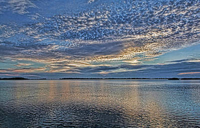 Photograph - Blue Persuasion by HH Photography of Florida