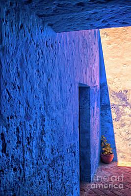 Photograph - Blue Peru by Patricia Hofmeester