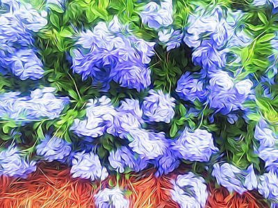 Photograph - Blue Plumbago Blossoms Abstract by Aimee L Maher ALM GALLERY