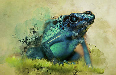 Painting - Blue Poisonous Frog by Jaroslaw Blaminsky