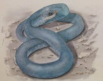Painting - Blue Racer Snake by Kelly Mills