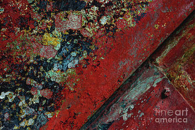 Abstract Photograph - Blue Red Yellow Smarties by Dorothy Hilde