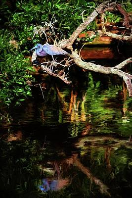 Photograph - Blue Reflected by Alice Gipson