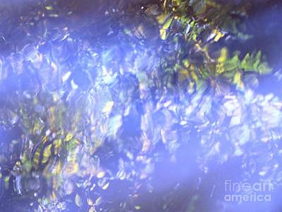 Photograph - Blue Reflection by Melissa Stoudt