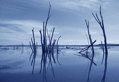 Photograph - Blue Reflections by Kathleen Stephens