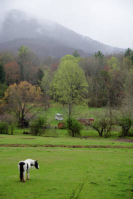 Photograph - Blue Ridge by Lindsey Weimer