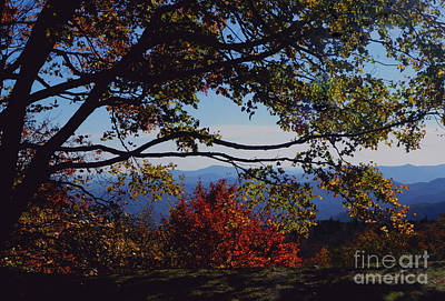 Photograph - Blue Ridge Mountain View by Debra Crank