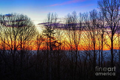 Photograph - Blue Ridge Mountain Winter Trees At Sunrise by Dan Carmichael