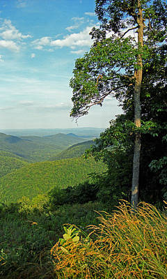 Photograph - Blue Ridge Mountains, Virginia 10 by Frank Romeo