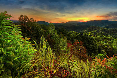 Photograph - Blue Ridge Mountainside Overlook by Debra and Dave Vanderlaan
