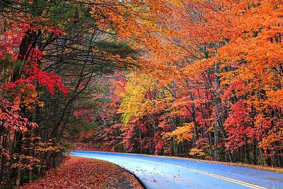 Photograph - Blue Ridge Parkway Fall by Carol Montoya