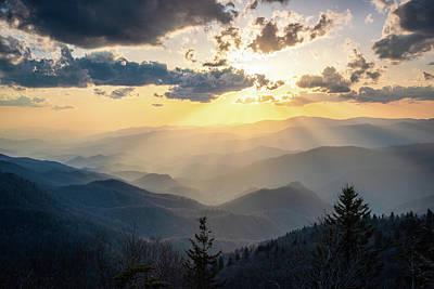 Easter Bunny - Blue Ridge Parkway NC Cherokee Spotlight  by Robert Stephens