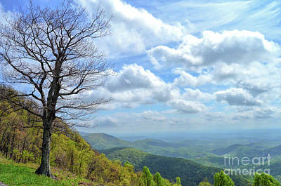 Photograph - Blue Ridge Parkway Views - Rock Castle Gorge by Kerri Farley