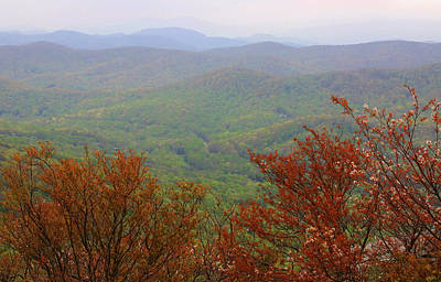 Photograph - Blue Ridge View 2 by Karol Livote