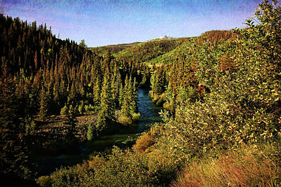Photograph - Blue River In Colorado Fall Colors by Judy Vincent
