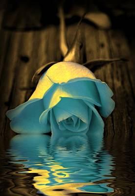 Golden Digital Art - Blue Rose Reflection by Lilia D