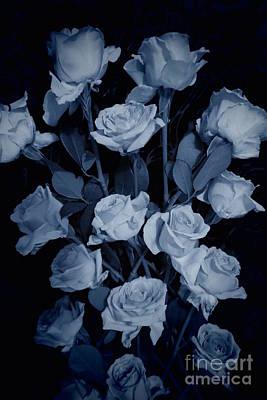 Photograph - Blue Roses by Tara Shalton