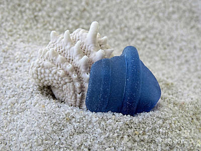 Photograph - Blue Sea Glass And Seashell  by Janice Drew