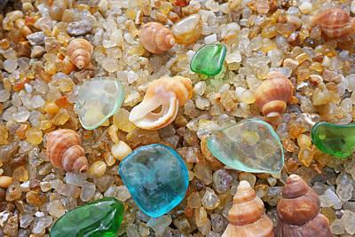 Decorative Fossil Photograph - Blue Sea Glass Art Prints Rock Garden Shells Agates by Baslee Troutman Fine Art Prints