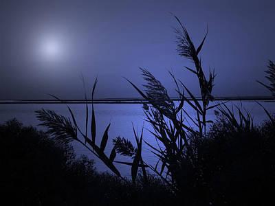 Photograph - Blue Serenity by Allen Beilschmidt
