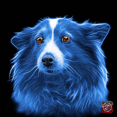 Mixed Media - Blue Shetland Sheepdog Dog Art 9973 - Bb by James Ahn