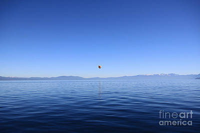 Photograph - Blue by Shishir Sathe