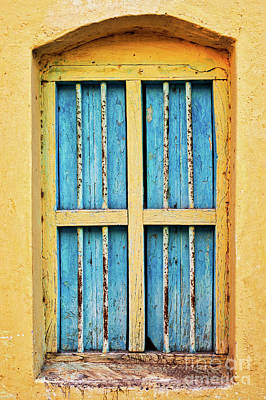 Blue Shutters Art Print by Tim Gainey