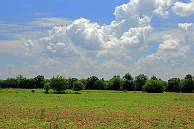 Photograph - Blue Skies And Green Fields by Angela Murdock