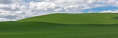 Photograph - Blue Skies Meet Green In The Palouse   Washington State by Willie Harper