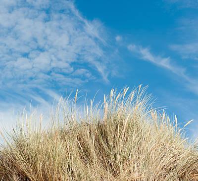 Photograph - Blue Sky And Marram Grass by Helen Northcott
