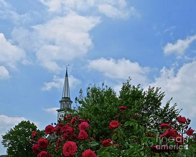 Photograph - Blue Sky And Roses by Nancy Patterson