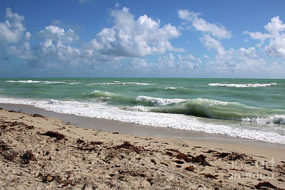 Photograph - Blue Sky Beach by Carol Groenen