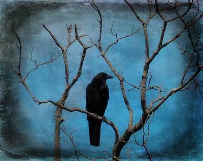 Blue Sky Blackbird Art Print by Gothicrow Images
