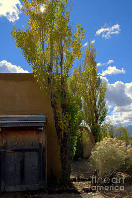 Photograph - Blue Sky Casita by Anjanette Douglas