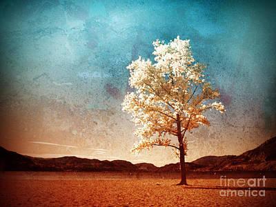 Photograph - Blue Sky Dreams by Tara Turner