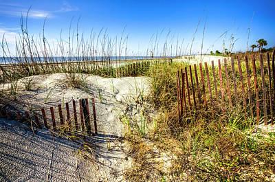 Photograph - Blue Sky Dunes by Debra and Dave Vanderlaan
