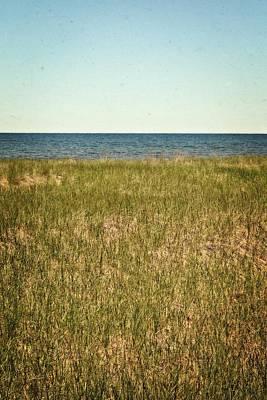 Photograph - Blue Sky Green Grass by Michelle Calkins