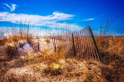 Driftwood Beach Fog Wall Art - Photograph - Blue Sky Over The Dunes by Debra and Dave Vanderlaan