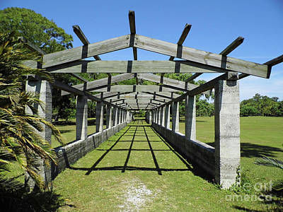 Photograph - Blue Sky Pergola by D Hackett
