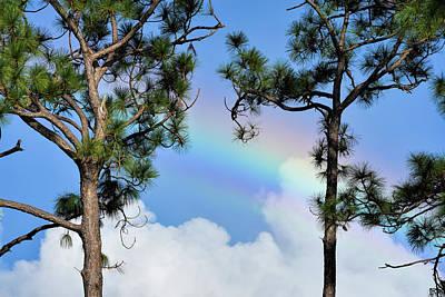 Photograph - Blue Sky Rainbow by William Tasker