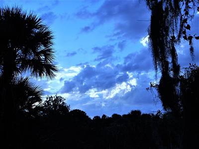 Park Photograph - Blue Sky by Ric Schafer