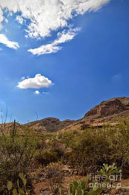 Cactus Photograph - Blue Sky Sonoran Desert by Rincon Road Photography By Ben Petersen