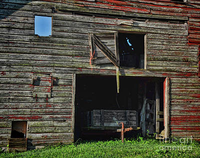 Photograph - Blue Sky Window by Randy Rogers