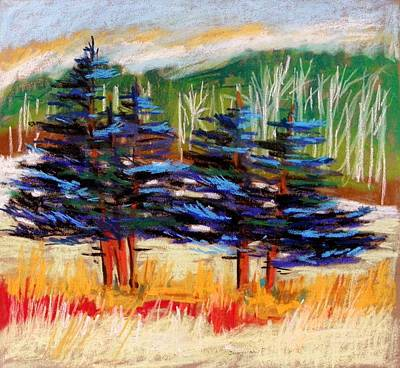 John M Williams Drawing - Blue Spruce Stand by John Williams