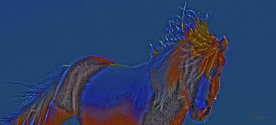 Photograph - Blue Stallion by Amanda Smith