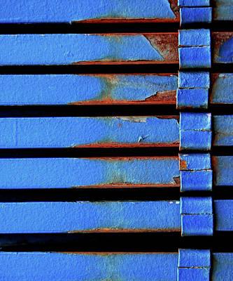 Photograph - Blue Steele by Michael Evans