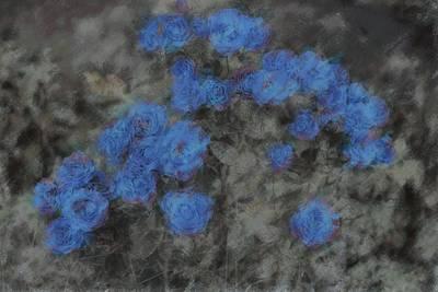 Sadness Photograph - Blue Summer Roses by The Art Of Marilyn Ridoutt-Greene