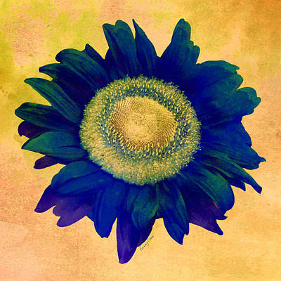 Digital Sunflower Mixed Media - Blue Sunflower by Stacey Chiew